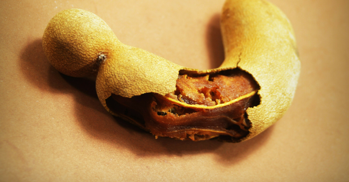 Exotic Tropical Fruits - Tamarind