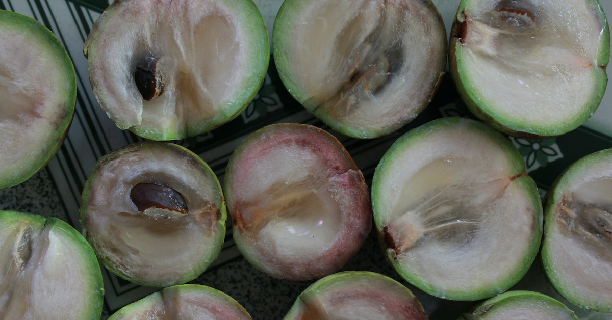 Exotic Tropical Fruits - Starapple